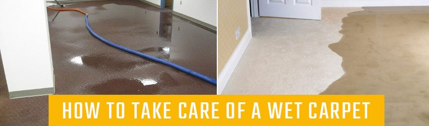 How to take care of wet carpet