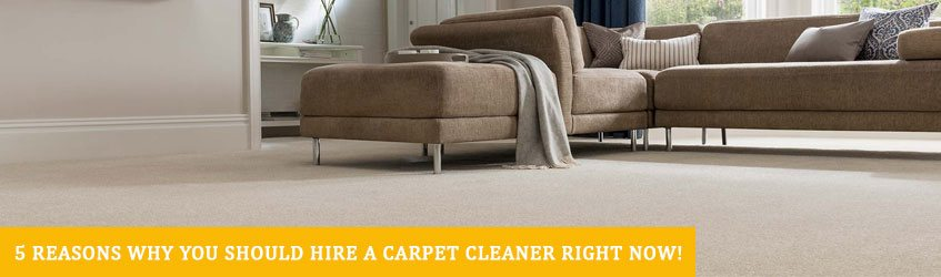 Professional Carpet Cleaning in Melbourne