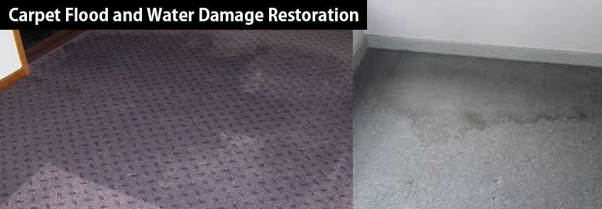 Carpet Flood and Water Damage Restoration Bunding