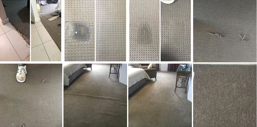 Carpet Cleaning Patrick Estate