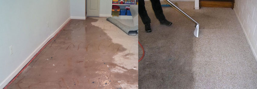 Water Damage Restoration West Haldon