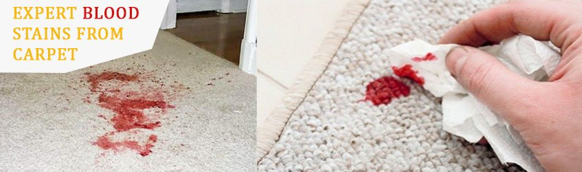Blood Stains From Carpet in Melbourne