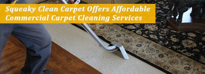 Expert Carpet Cleaning Services in Canberra