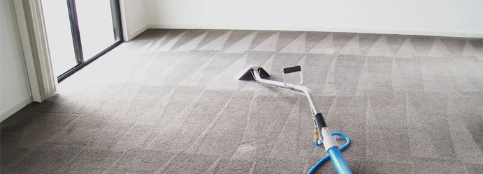 Best Carpet Cleaner Melbourne