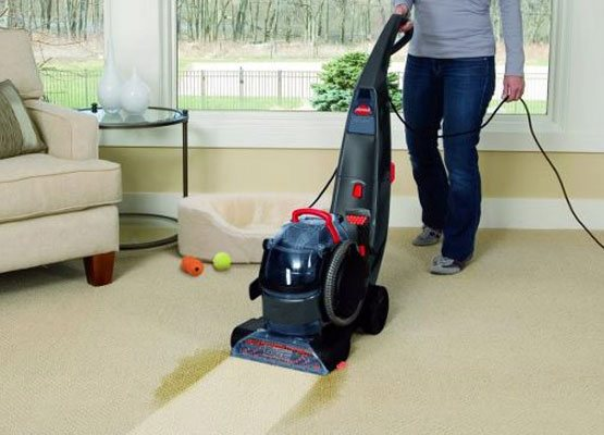 Carpet Cleaning Bungeet