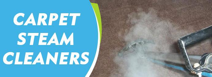 Image result for carpet cleaning sydney