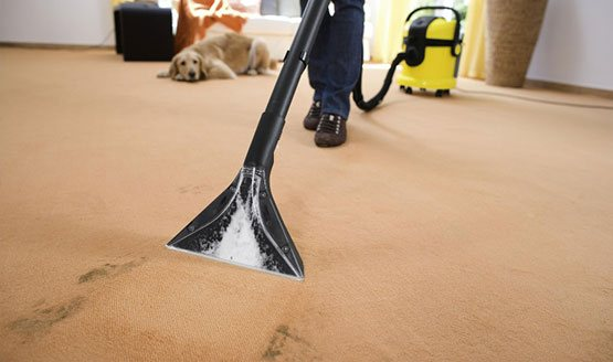 Stain removal from carpet