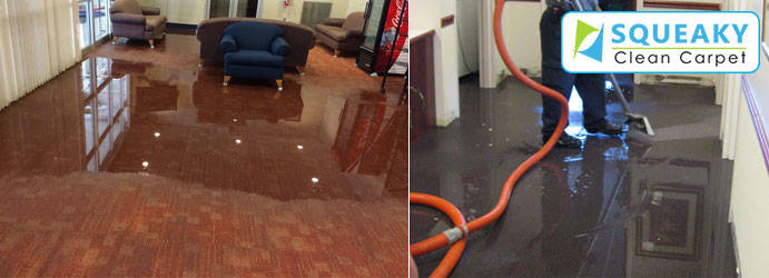 Carpet Flood Recovery Green Valley