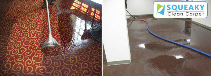 Carpet Water Extraction Warrimoo