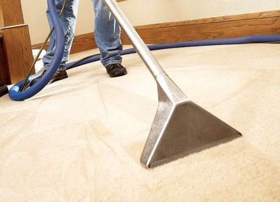 Residential Carpet Cleaning Edi