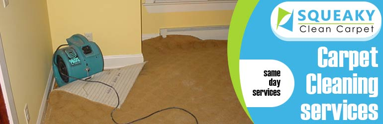 Carpet Cleaning Leslie Vale