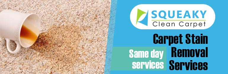 Carpet Stain Removal Tailem Bend