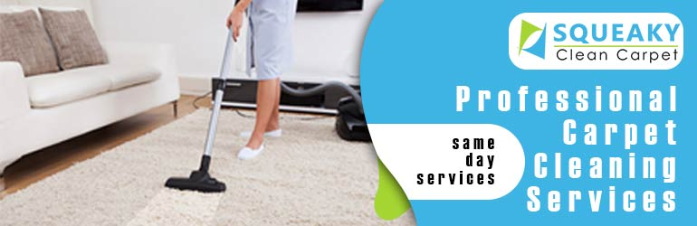Professional Carpet Cleaning Leslie Vale