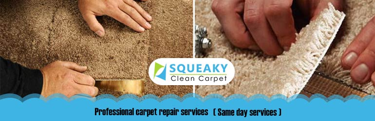 Professional Carpet Repairs Logan Reserve