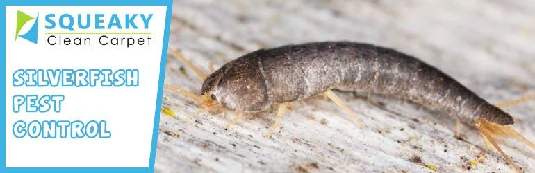 Silverfish Pest Control Melbourne