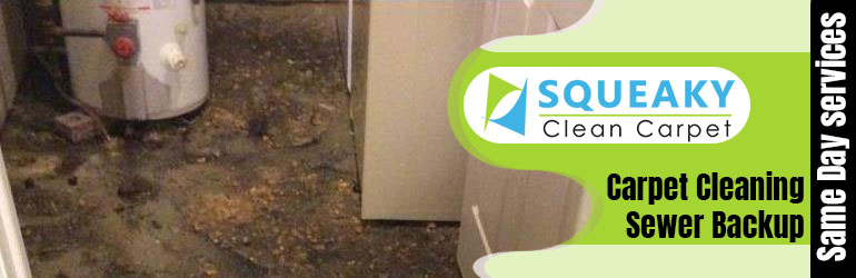 Carpet Cleaning Sewer Backup Glenelg