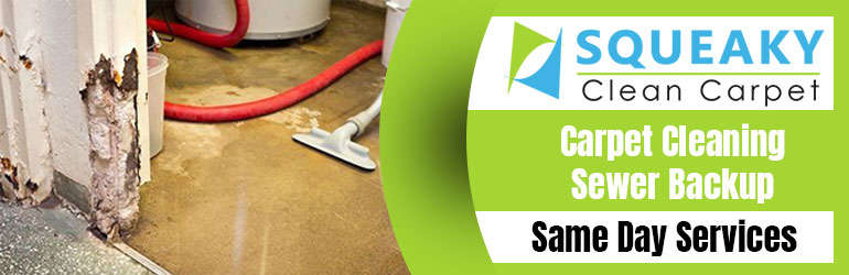 Carpet Cleaning Sewer Backup Conder