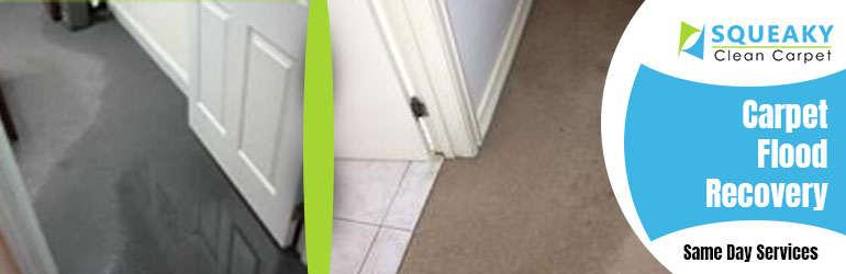 Carpet Flood Recovery Service