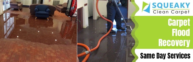 Carpet Flood Recovery services Glenelg