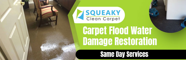 Carpet Flood Water Damage Restoration Glenelg