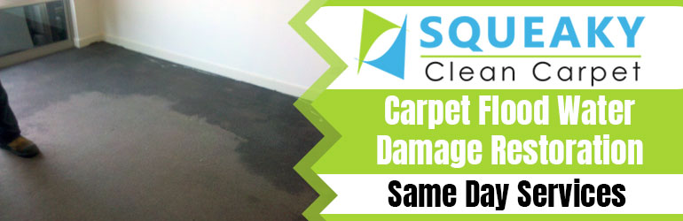 Expert Carpet Water Damage Restoration