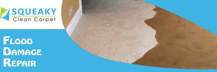 6 Steps to Prevent Carpet Mold After Water Damage