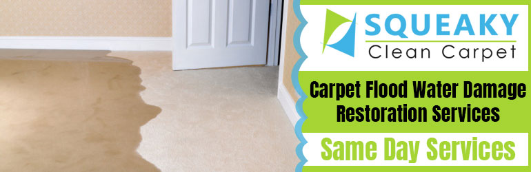Professional Carpet Flood Water Damage Restoration-Services