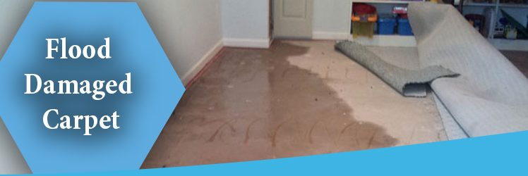 Steps To Deal With Flood Damaged Carpet