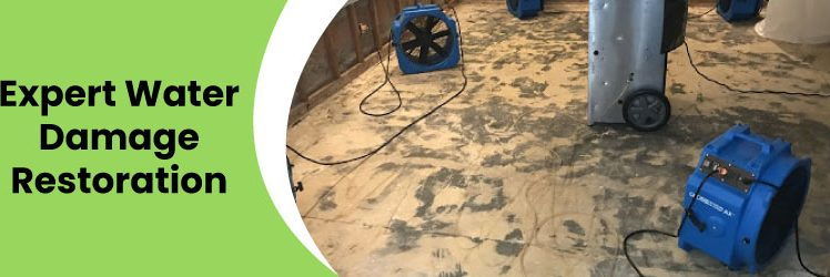 Hiring a Water Damage Restoration Company For Your Home