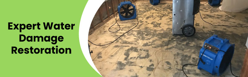 Expert Water Damage Restoration Service