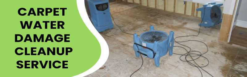 Choosing A Reputable Water Damage Cleanup Company ...
