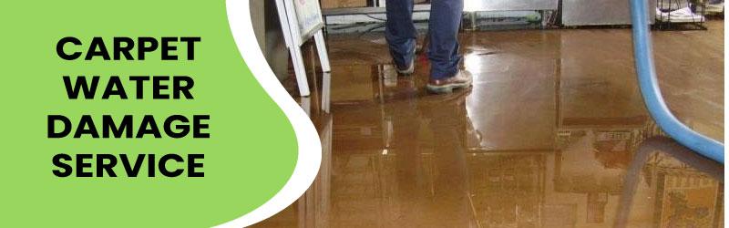 Carpet Water Damage Service
