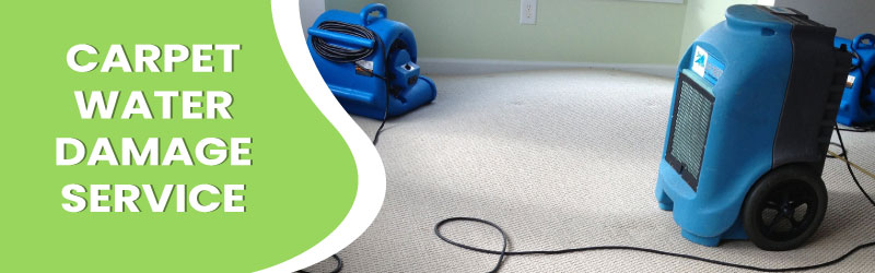 Carpet Water Damage Services