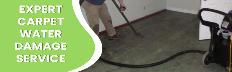 Expert Carpet Water Damage Service