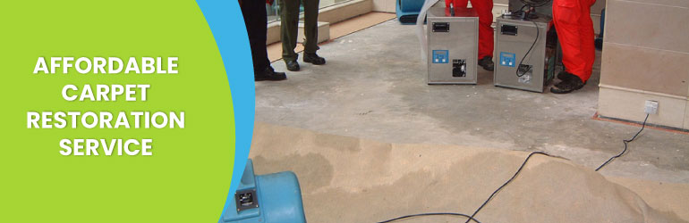Carpet Restoration Service