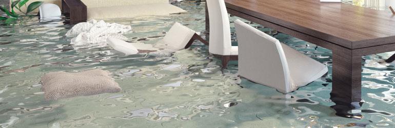 Home Flood-Damage Prevention Service