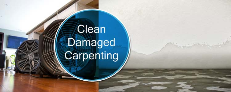 Clean Damaged Carpeting