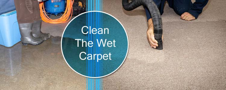 Clean The Wet Carpet
