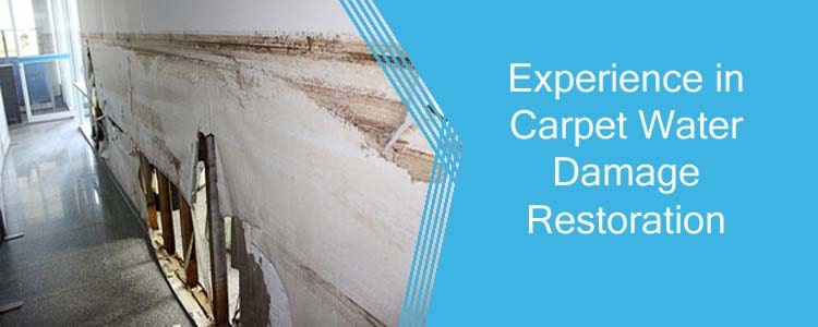 Experience in Carpet Water Damage Restoration