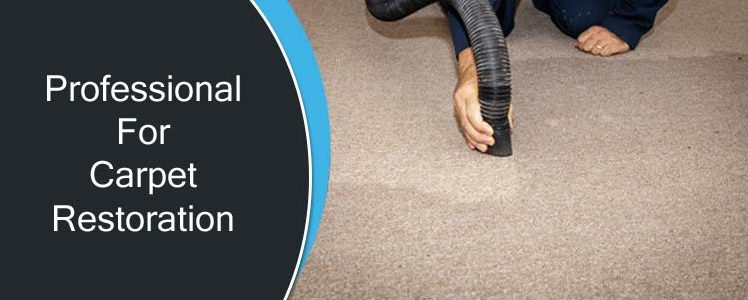 Why Trust Upon Professionals For Carpet Restoration?